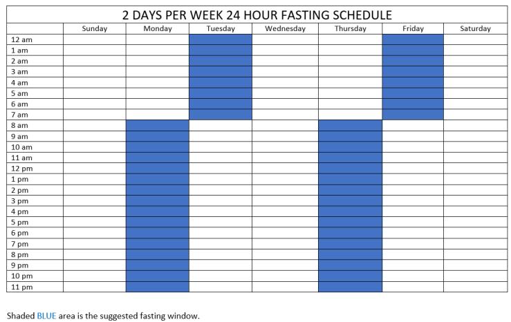 2 day per week 24 hour fast